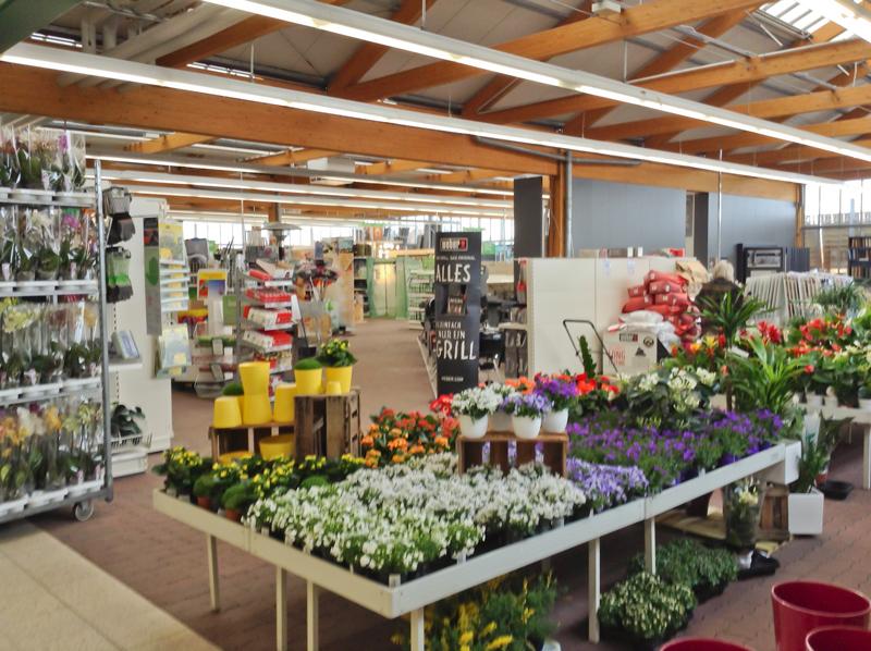 Bau- und Gartenmarkt Bayern - Pflanzen